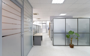 office-decorative-window-film-hallway