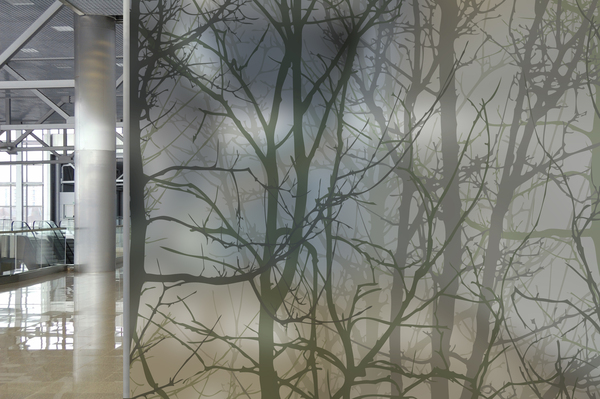 Decorative Window Film For A Brand New Style Denver