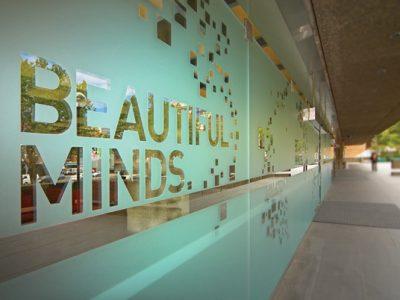 decorative window film office denver