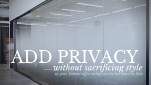 privacy window film denver office